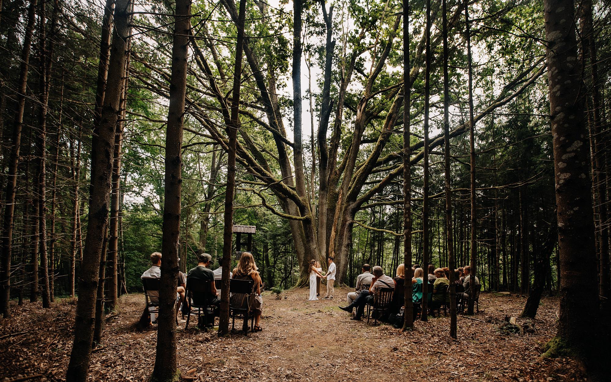 vestuviu-fotografas-plepys-m-6